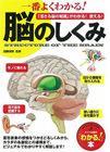 脳のしくみ.jpg